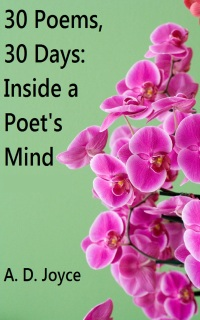 Ebook: 30 Poems, 30 Days: Inside a Poet's Mind